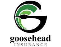 goosehead-insurance